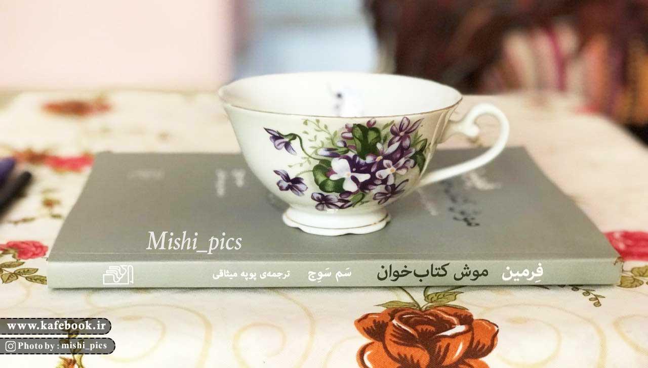 فرمین موش کتاب خوان - کافه بوک