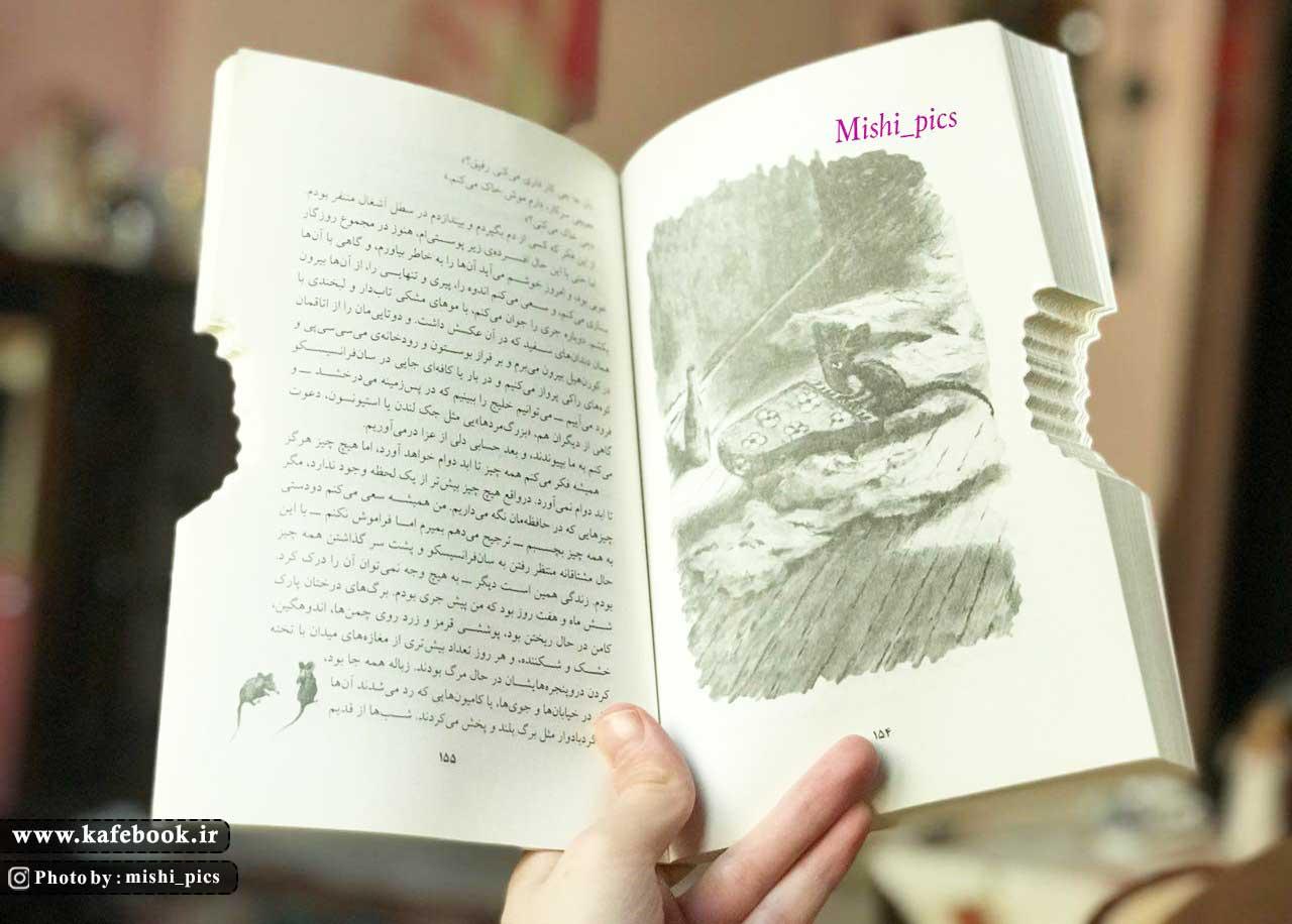 خلاصه کتاب فرمین موش کتاب خوان